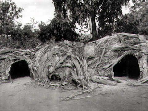 wooden-wiltja