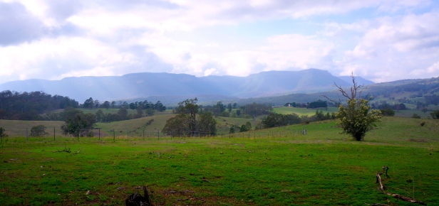 Megalong cropped tinted 1 copy